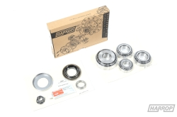 Rebuild Kit | Diff | Ford | Mazda | Rear | MAZ2100